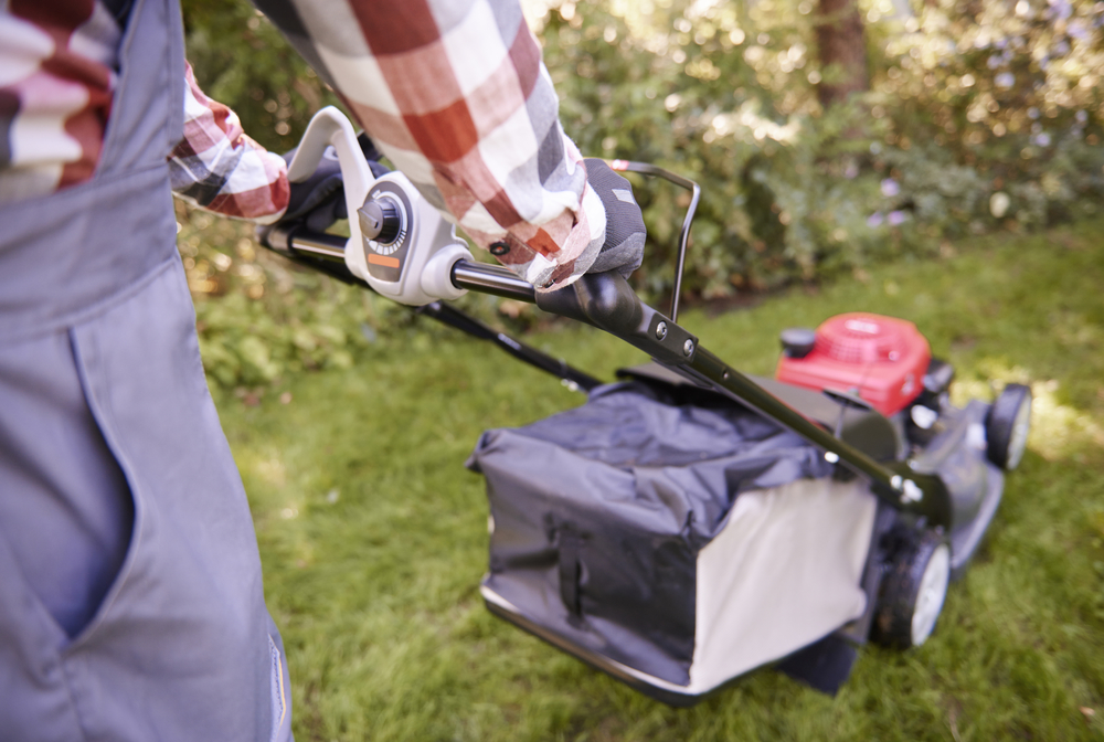How to mow your lawn like an Expert